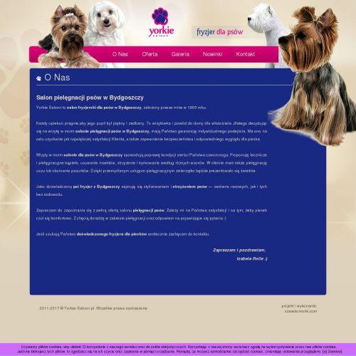 Bydgoszcz - fryzjer psi