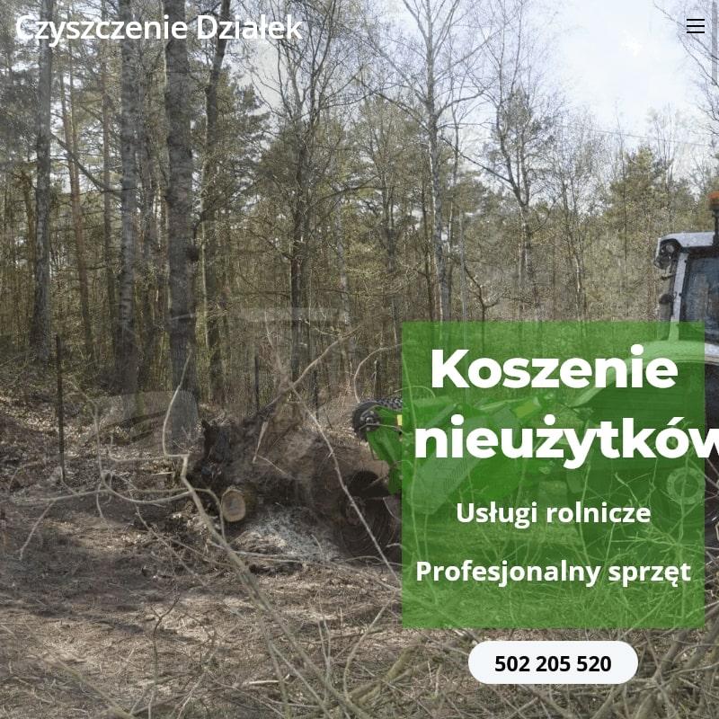 Wycinka drzew w Warszawie